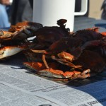 PIcs of Crab eating